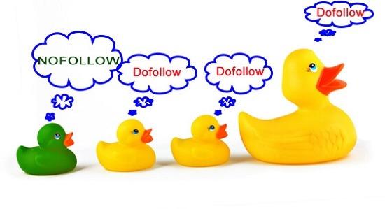Cân đối tỷ lệ dofollow và nofollow